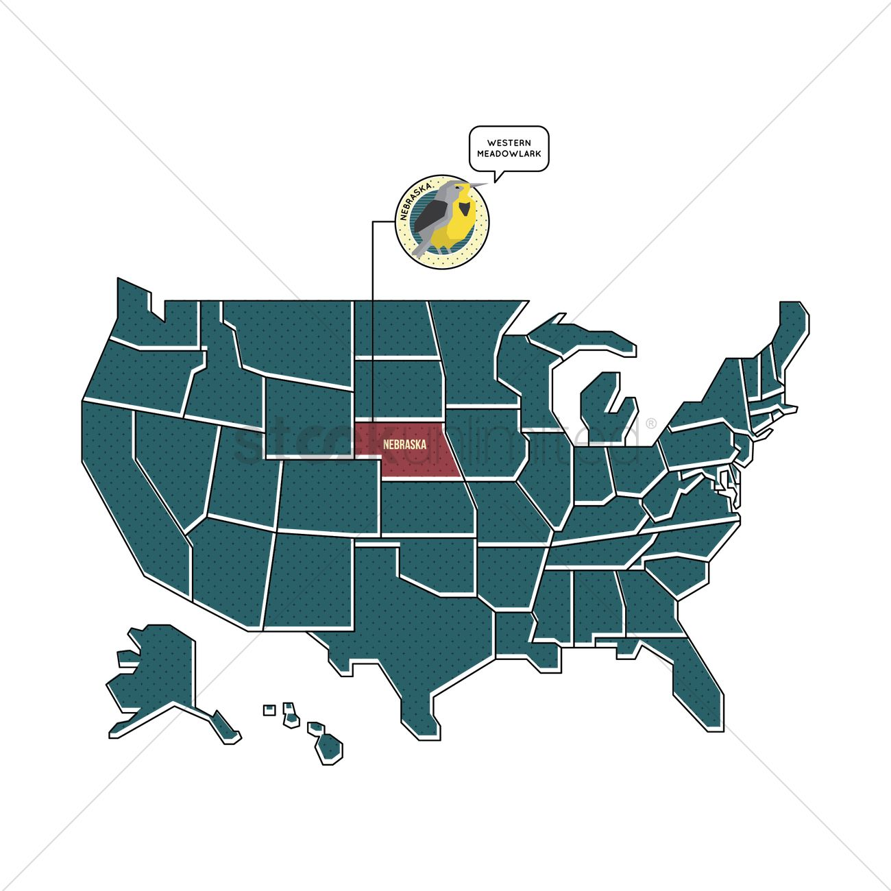 Us Map With Nebraska State Bird Vector Image 1567449 Stockunlimited