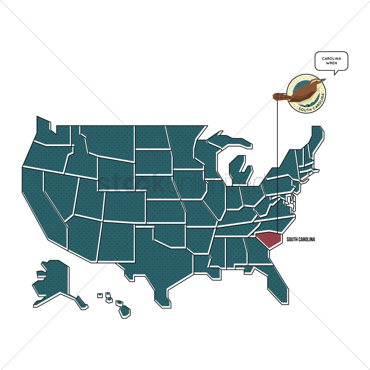 Us Map With South Carolina State Bird Vector Graphic