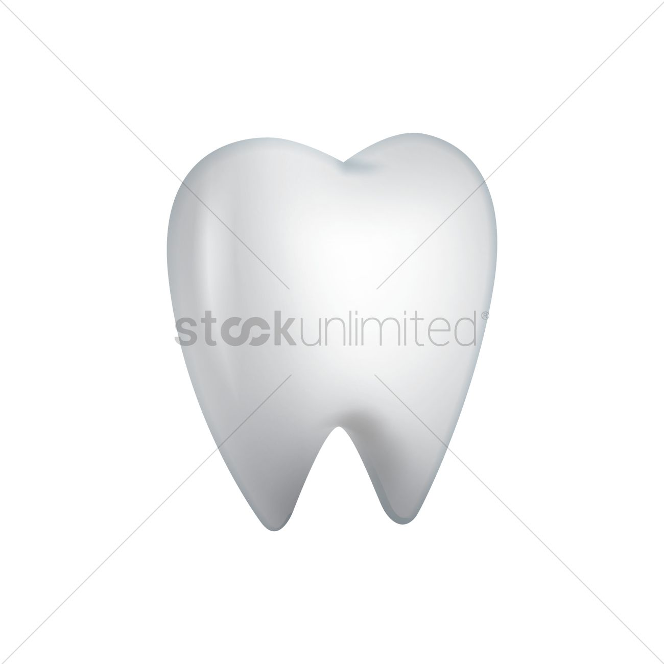 Wisdom molar tooth Vector Image - 1964105 | StockUnlimited