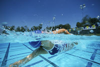 Female swimmer in pool surface view