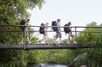 Popular : Four teenagers  16-17 years  backpacking in forest crossing wooden bridge side view