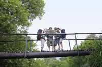 Four teenagers  16-17 years  backpacking in forest reading map on bridge