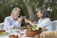 Senior couple toasting at table in garden