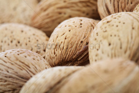 Organic : Almond in shell on white background