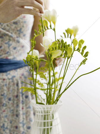 Easter : Arranging freesias in vase