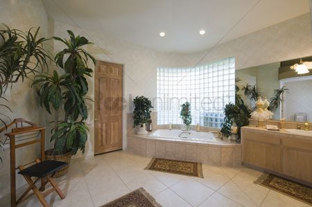 Houseplant : Bathroom with glass brick window and trouser press