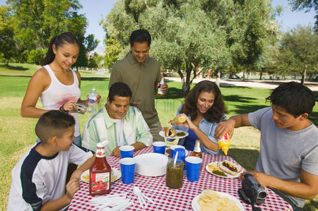 Hot dog : Boy  13-15  with family at picnic