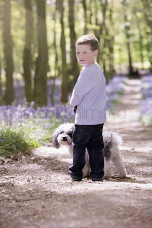 Spring : Boy and dog taking a walk in the woods