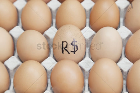 Egg tray : Brazilian currency sign on egg surrounded by plain brown eggs in carton