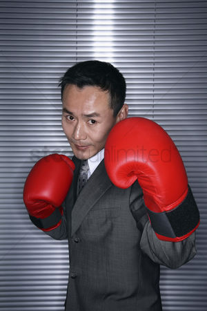 Fight : Businessman wearing boxing gloves