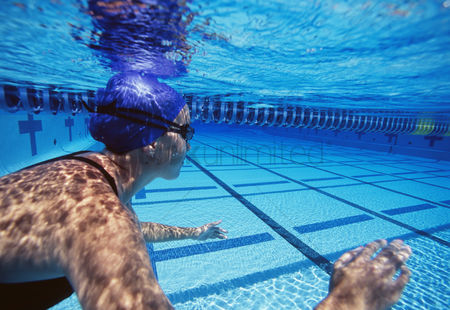 Swimmer : Caucasian female swimmers swimming in pool