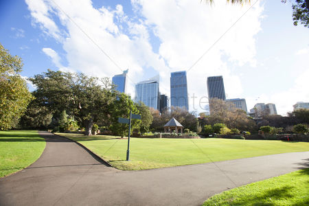 Grass : Central business district and botanical gardens  sydney  australia
