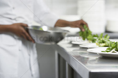 Bowl : Chef preparing salad in kitchen mid section