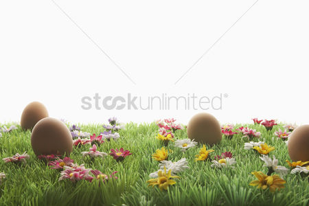 Grass background : Easter eggs on artificial meadow
