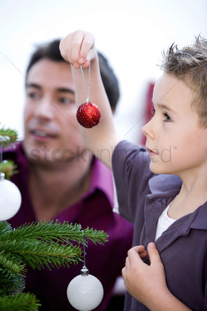 Adulthood : Father and son decorating the christmas tree