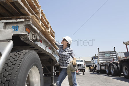 Land : Female industrial worker strapping down wooden planks on logging truck
