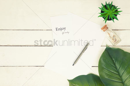 Blank : Flatlay of white background with plants and seashells