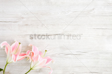 Background : Flatlay of wooden background and lilies