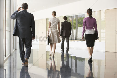 Lady : Four businesspeople walking in office corridor