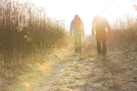 Winter : Full length rear view of male hikers walking together in field