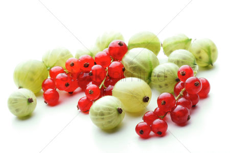 Blue background : Gooseberries and redcurrants on white background