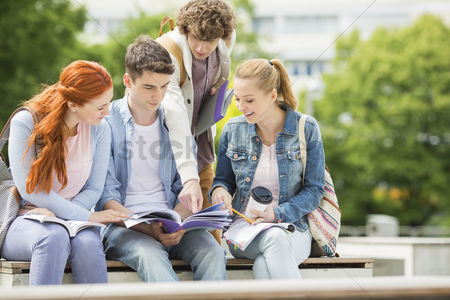 Three quarter length : Group of friends studying together at university campus