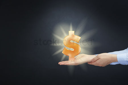 Dollar sign : Hand presenting business finance concept