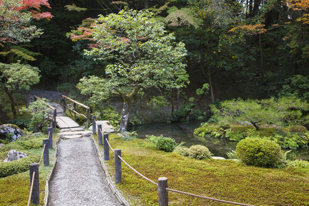 Garden : Japan kyoto tenju-an temple garden with footpath and bridge