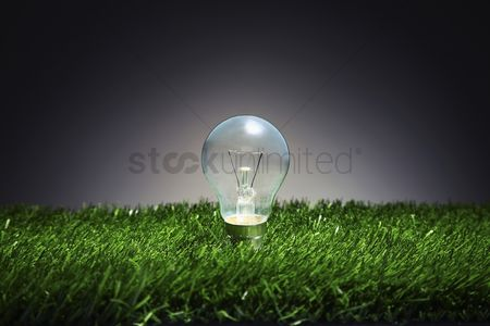 Grass : Lightbulb on grass