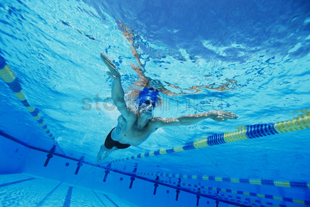 Swimmer : Man swimming in pool