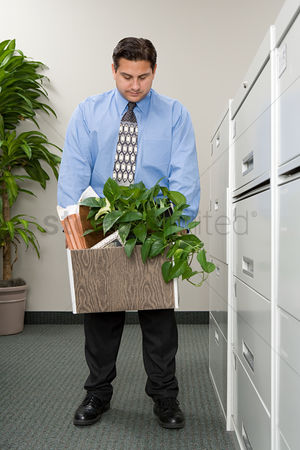 Houseplant : Man with belonging in a box