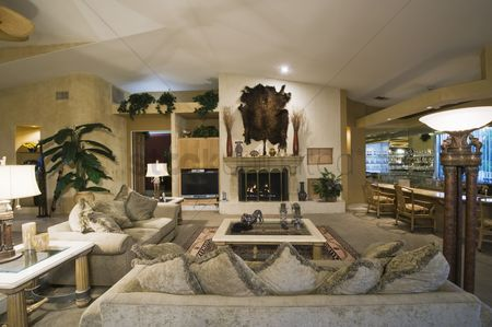 Decor : Palm springs living room with wall-mounted animal pelt