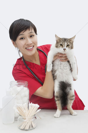Domesticated animal : Portrait of an asian female veterinarian holding cat against gray background
