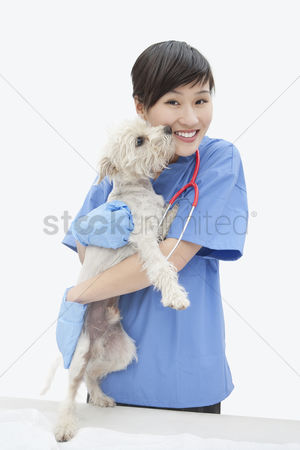 Domesticated animal : Portrait of asian female veterinarian cuddling dog over gray background