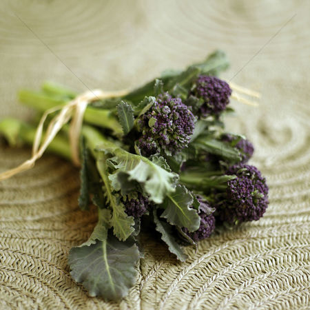 Food  beverage : Purple long stem broccoli