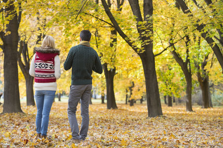 Girlfriend : Rear view of young couple walking in park during autumn