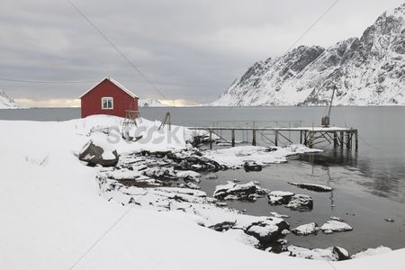 Winter : Remote house in coastal landscapeskjelfjord flakstadoya  loftofen norway