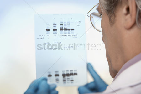 Knowledge : Scientist looking at dna test results indoors
