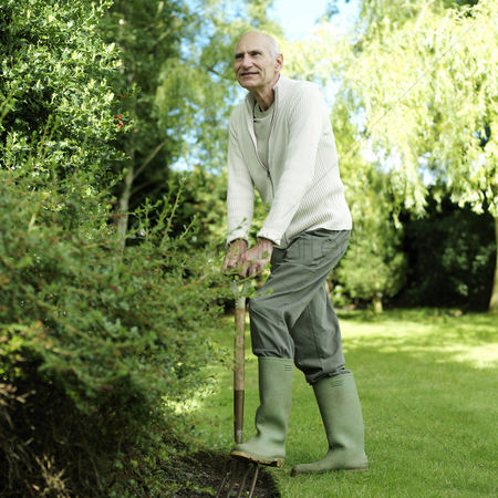 Aging process : Senior man stepping on a gardening fork