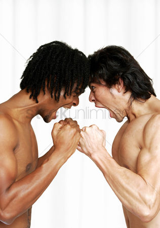 Fury : Side shot of an african american man and a man screaming and looking at each other in anger