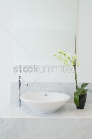Elegance : Sink and potted plant in bathroom