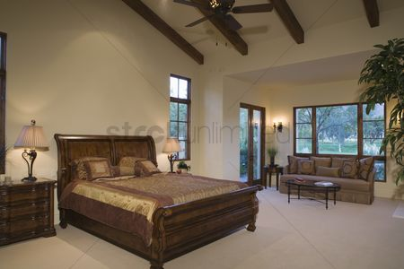 Houseplant : Sleigh bed in palm springs home