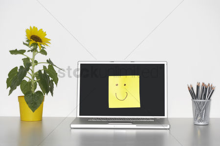 Houseplant : Smiley face on laptop by pencils in cup and flowers on desk