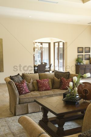 Houseplant : Sofa with cushions and wooden coffee table