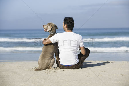 Contemplation : South africa cape town man and dog sitting beach