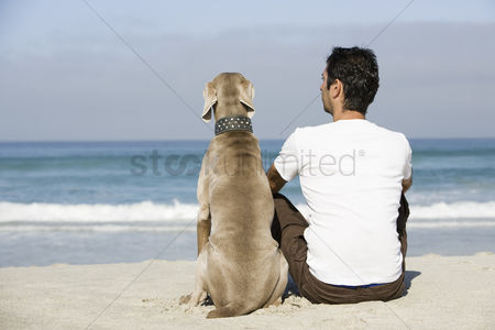 Animal : South africa cape town man and dog sitting beach