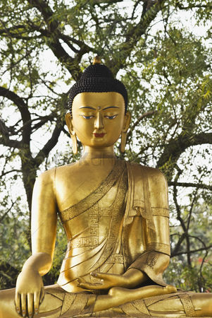 God : Statue of lord buddha in a park  new delhi  india
