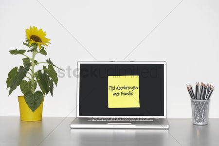 Advice : Sunflower plant on desk and sticky notepaper with dutch text on laptop screen saying  tijd doorbrengen met familie   spending time with family