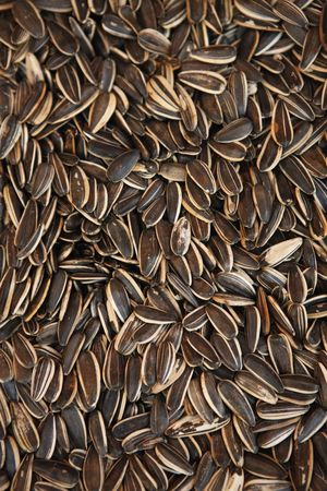 China : Sunflower seeds
