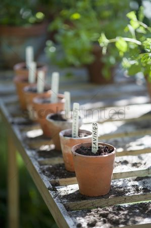 Greenhouse : Terracotta flowerpots with labels on workbench in potting shed